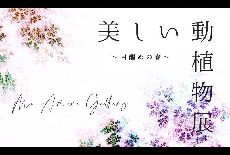 画像1: ◆ミ・アモーレ◆ 美しい動植物展〜目醒めの春〜 5/13(木)〜5/18(火) (1)