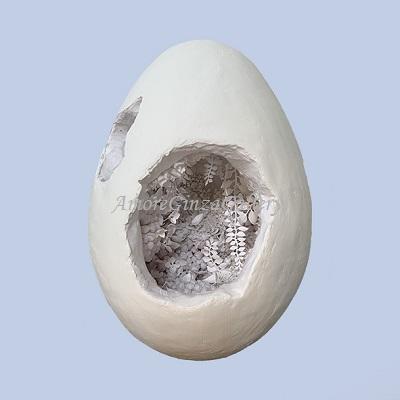画像1: shell (1)